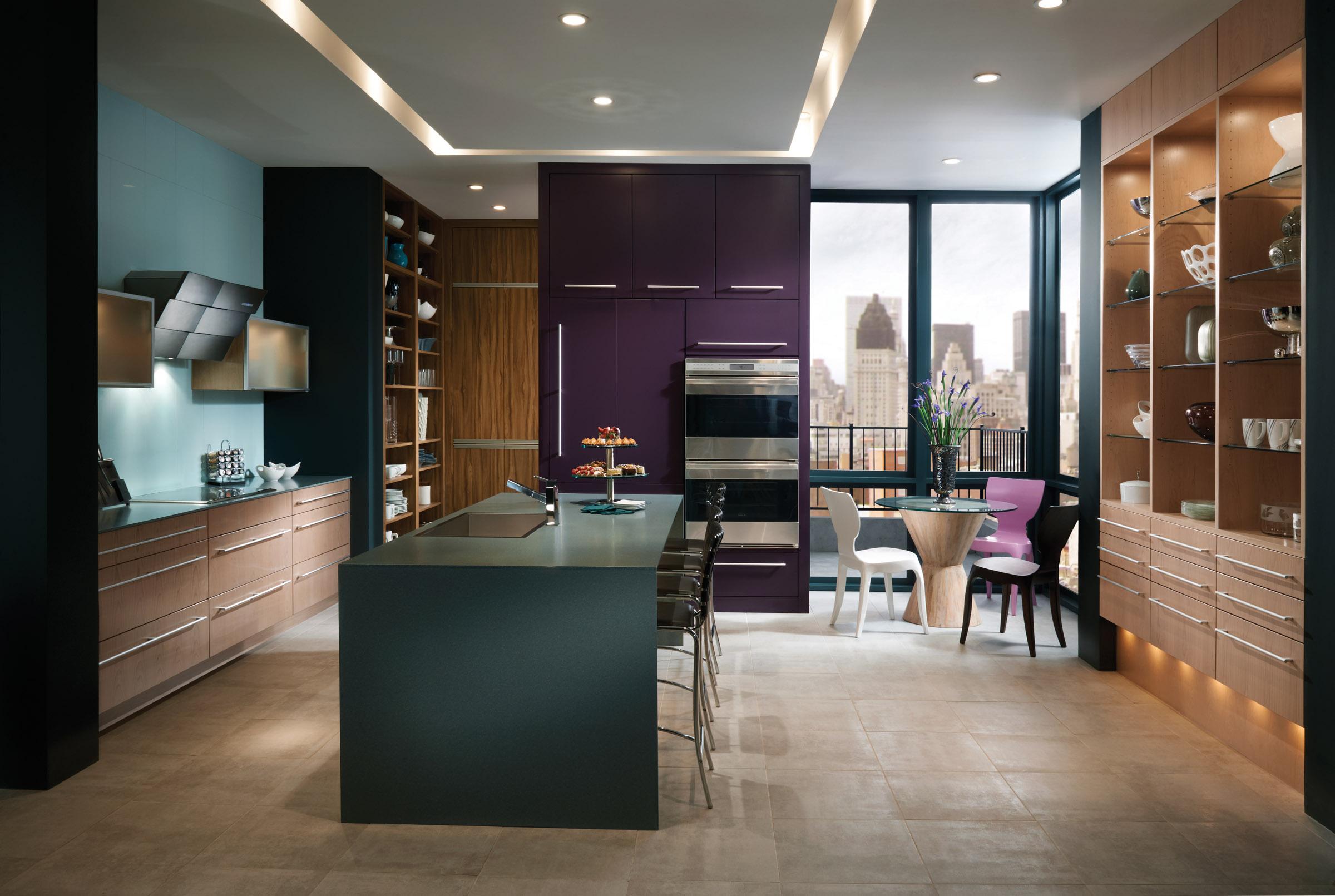 modern  contemporary kitchen designs  cabinetry designs